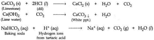 CBSE Sample Papers for Class10 Science Solved Set 6 16
