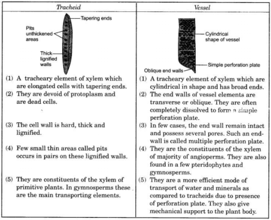 CBSE Sample Papers for Class 9 Science Solved Set 4 5
