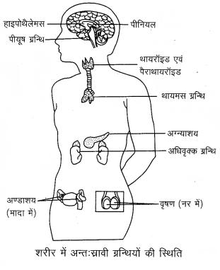 Arihant Home Science Class 12 Chapter 5 5m 4