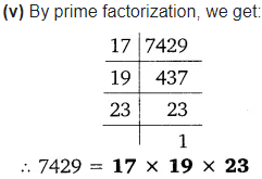 Real Numbers Class 10 Ex 1.2 Q 1 iv