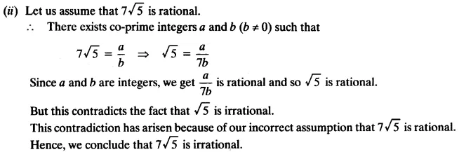 NCERT Solutions for Class 10 Maths Chapter 1 Real Numbers Q 7