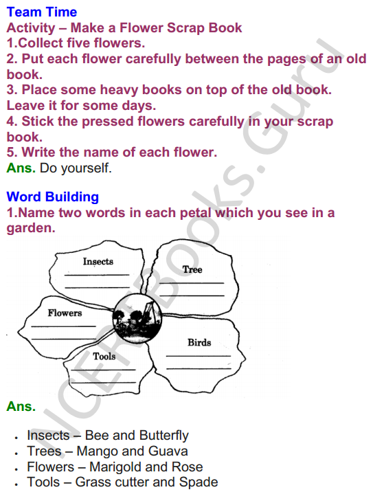 NCERT Solutions for class 3 English Unit-1 The Magic Garden 3