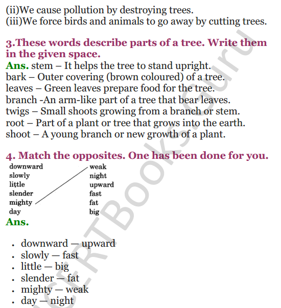 NCERT Solutions for class 3 English Unit-3 Poem Little by Little 3