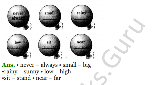NCERT Solutions for class 3 English Unit-5 Poem The Balloon Man 3
