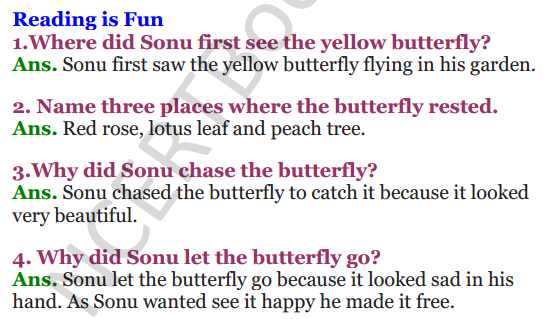 NCERT Solutions for Class 3 English Unit-5 The Yellow Butterfly 1