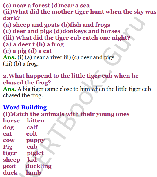NCERT Solutions for Class 3 English Unit-7 Little tiger, Big tiger 2