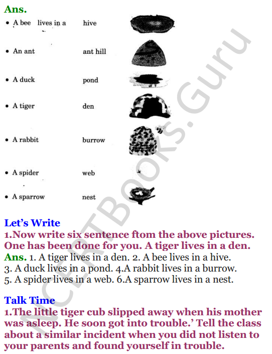 NCERT Solutions for Class 3 English Unit-7 Little tiger, Big tiger 6