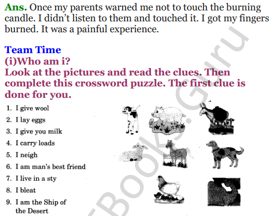 NCERT Solutions for Class 3 English Unit-7 Little tiger, Big tiger 7