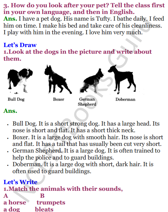 NCERT Solutions for Class 3 English Unit-7 Poem Puppy and I 2