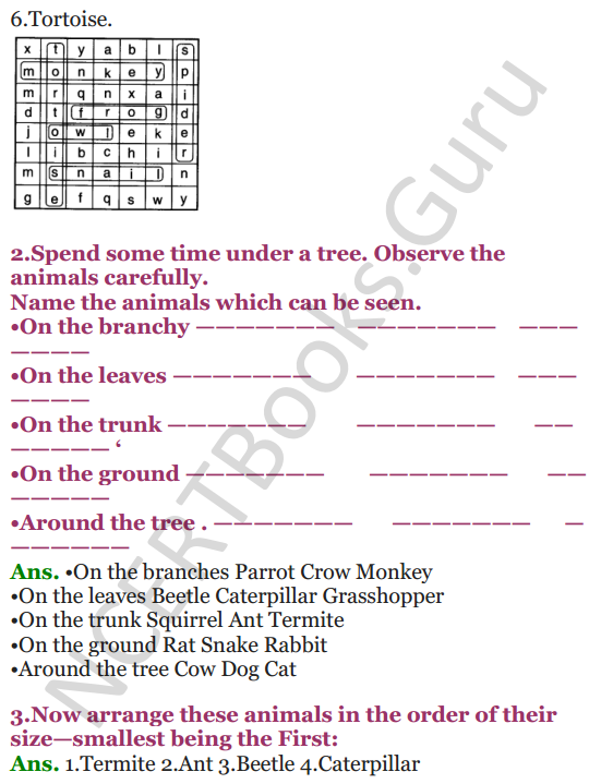 NCERT Solutions for Class 3 EVS Chapter 1 Poonams Day out 4