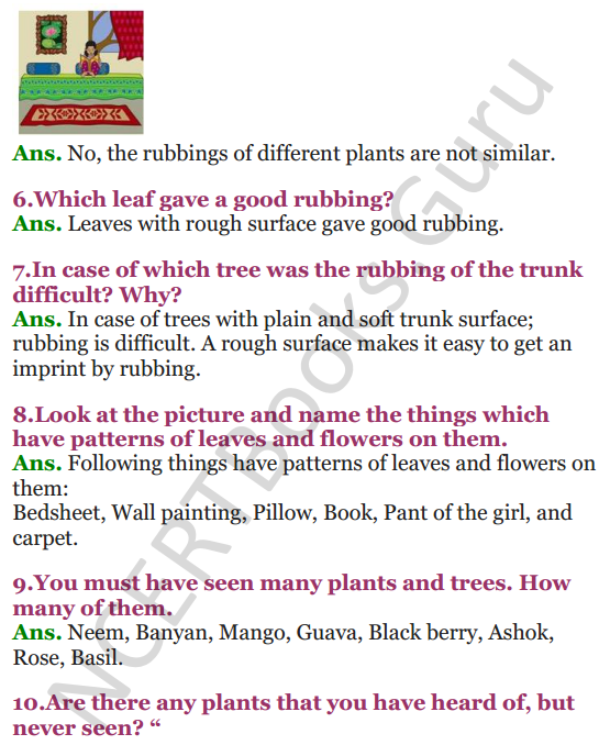 NCERT Solutions for Class 3 EVS Chapter 2 The Plant Fairy 2