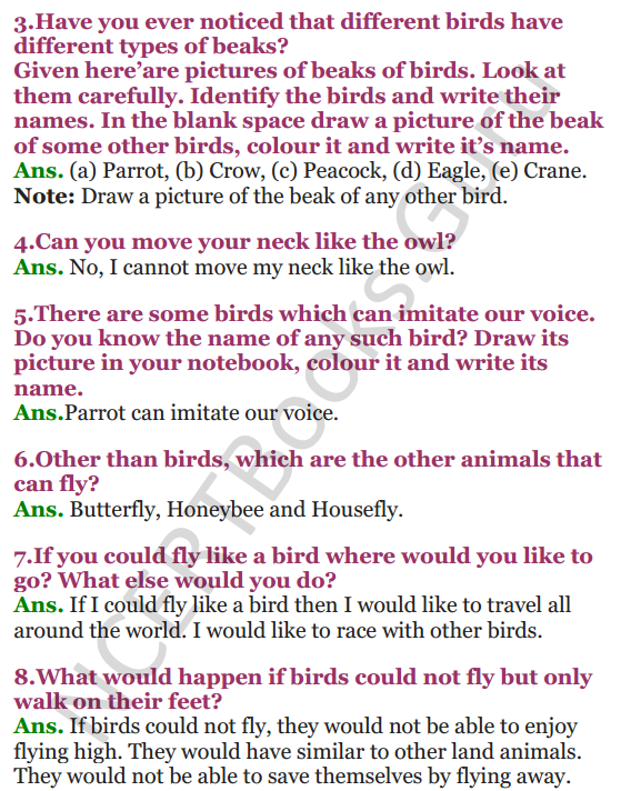 NCERT Solutions for Class 3 EVS Chapter 8 Flying High 2