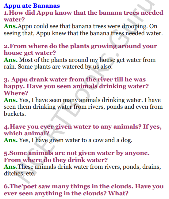 NCERT Solutions for Class 3 EVS Chapter 9 It's Raining 1