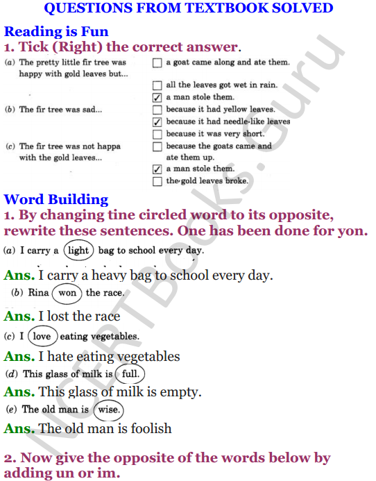 NCERT Solutions for Class 4 English Unit-2 The little fir tree 1