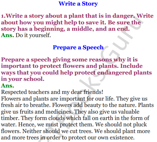 NCERT Solutions for Class 4 English Unit-8 Poem A watering rhyme 5