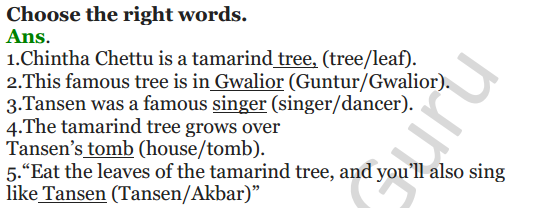 NCERT Solutions for Class 4 English Unit-8 The giving tree 5