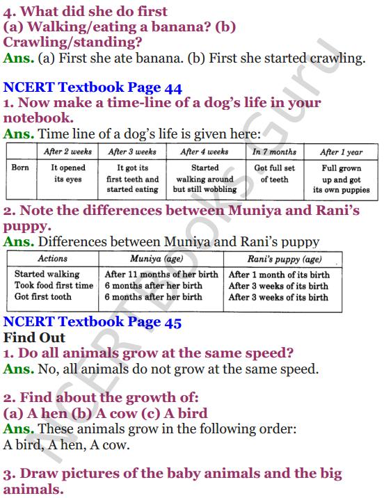 NCERT Solutions for Class 4 Mathematics Chapter-4 Tick-Tick-Tick 10