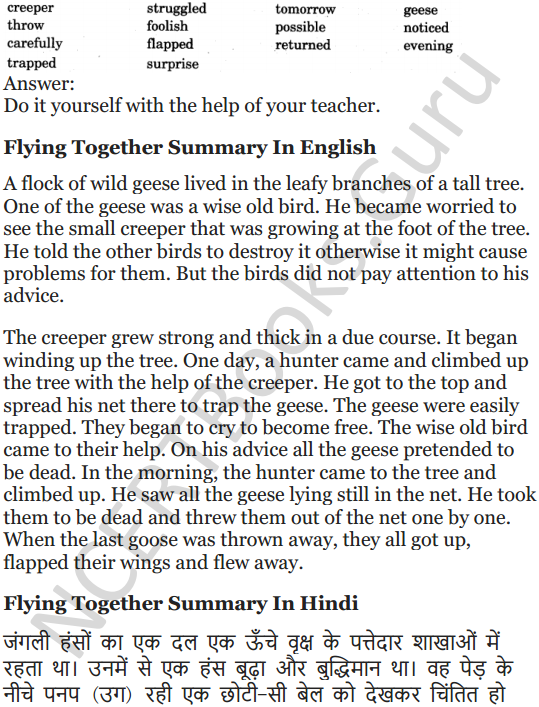 NCERT Solutions for Class 5 English Unit 2 Chapter 2 Flying Together 13