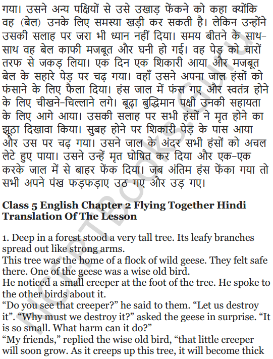 NCERT Solutions for Class 5 English Unit 2 Chapter 2 Flying Together 14