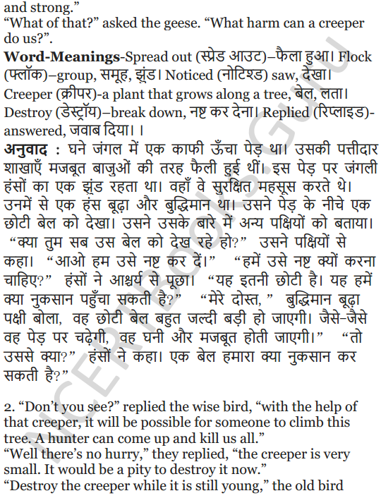 NCERT Solutions for Class 5 English Unit 2 Chapter 2 Flying Together 15
