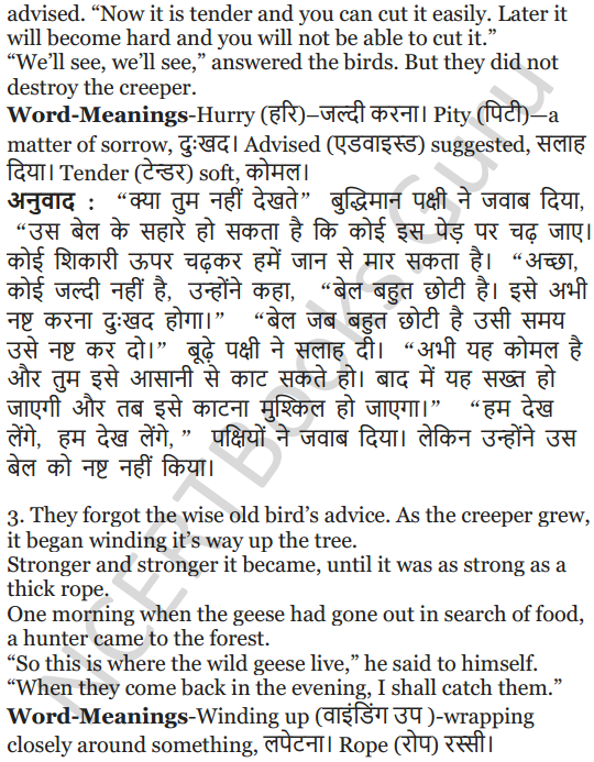 NCERT Solutions for Class 5 English Unit 2 Chapter 2 Flying Together 16
