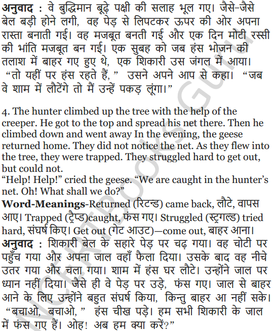 NCERT Solutions for Class 5 English Unit 2 Chapter 2 Flying Together 17