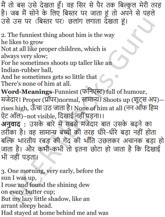 NCERT Solutions for Class 5 English Unit 3 Chapter 1 My Shadow 8