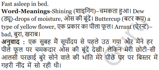 NCERT Solutions for Class 5 English Unit 3 Chapter 1 My Shadow 9