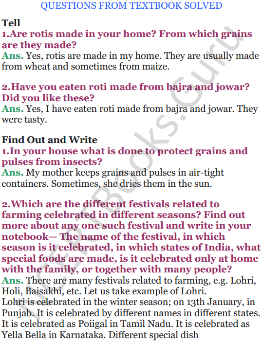 NCERT Solutions for Class 5 EVS Chapter 19 A Seed Tells A Farmers Story 1