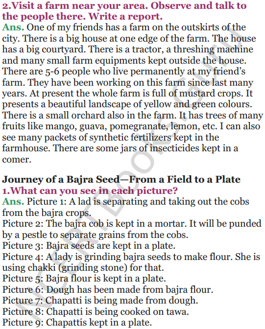 NCERT Solutions for Class 5 EVS Chapter 19 A Seed Tells A Farmers Story 6