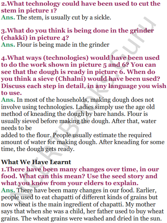 NCERT Solutions for Class 5 EVS Chapter 19 A Seed Tells A Farmers Story 7