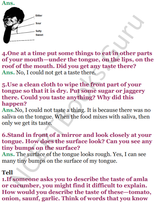 NCERT Solutions for Class 5 EVS Chapter 3 From Tasting To Digesting 3