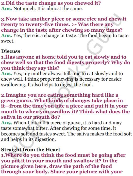 NCERT Solutions for Class 5 EVS Chapter 3 From Tasting To Digesting 5