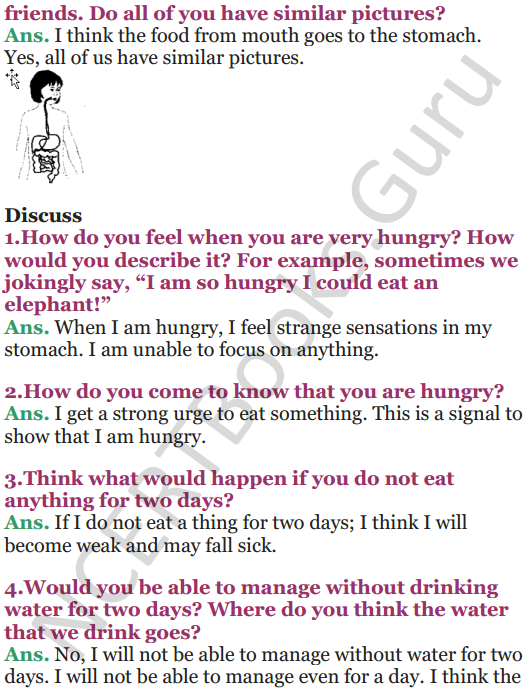 NCERT Solutions for Class 5 EVS Chapter 3 From Tasting To Digesting 6