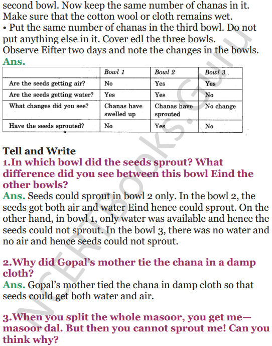 NCERT Solutions for Class 5 EVS Chapter 5 Seeds And Seeds 2