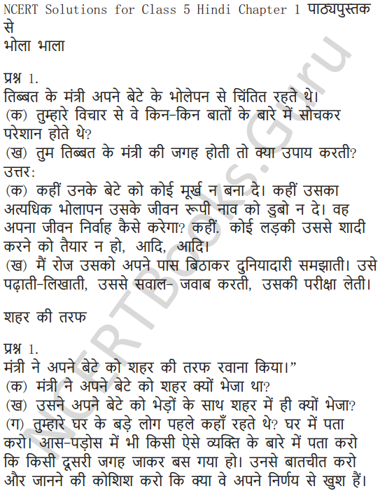 NCERT Solutions for Class 5 Hindi Chapter 1 रखा की रस्सी 1