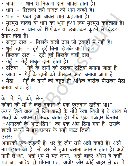 NCERT Solutions for Class 5 Hindi Chapter 11 चावल की रोटियां 5