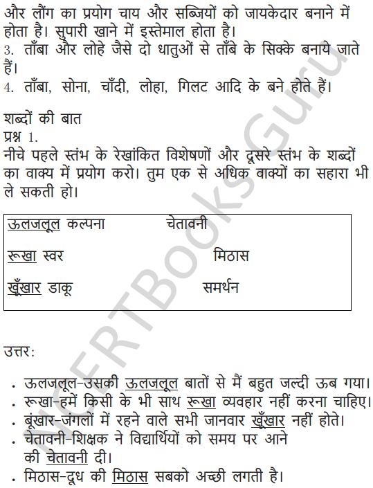 NCERT Solutions for Class 5 Hindi Chapter 13 स्वामी की दादी 6