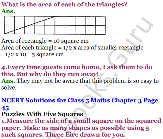 NCERT Solutions for Class 5 Maths Chapter 3 How Many Squares 16