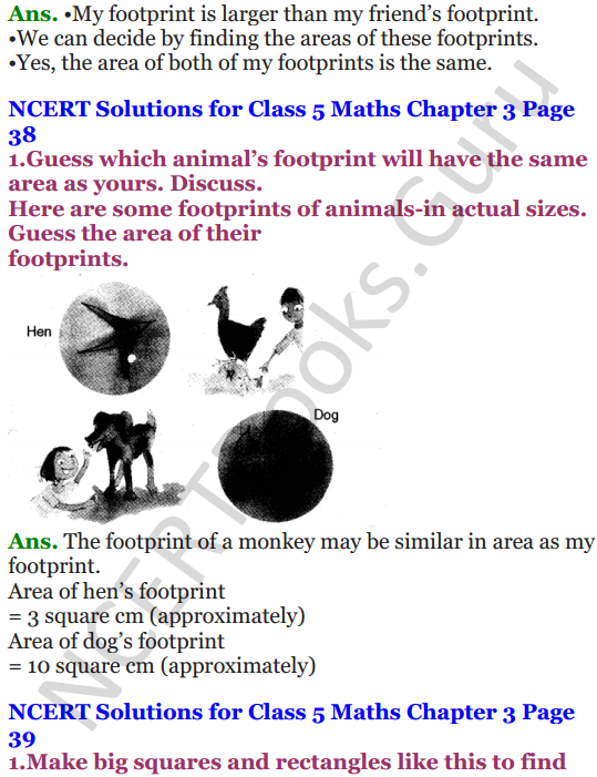 NCERT Solutions for Class 5 Maths Chapter 3 How Many Squares 7