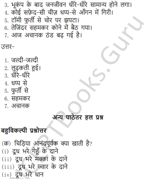 NCERT Solutions for Class 6 Hindi Chapter 1 वह चिड़िया जो 7