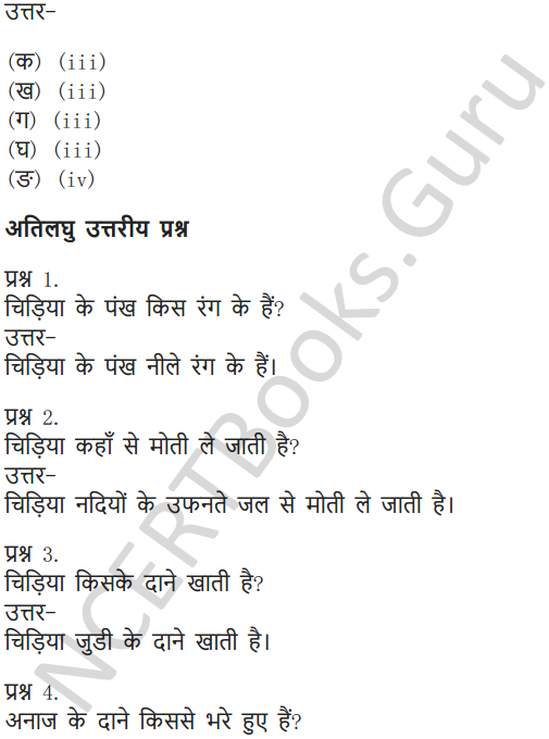 NCERT Solutions for Class 6 Hindi Chapter 1 वह चिड़िया जो 9