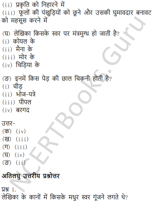 NCERT Solutions for Class 6 Hindi Chapter 11 जो देखकर भी नहीं देखते 12