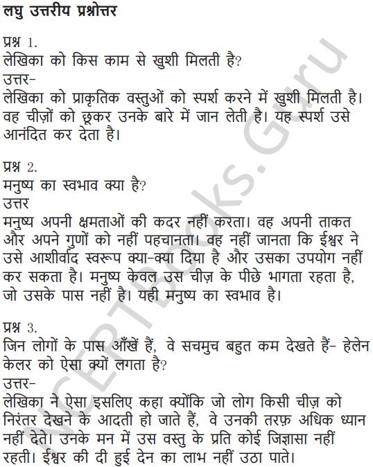 NCERT Solutions for Class 6 Hindi Chapter 11 जो देखकर भी नहीं देखते 14