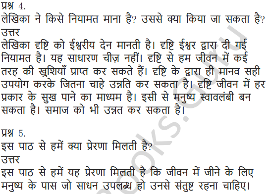 NCERT Solutions for Class 6 Hindi Chapter 11 जो देखकर भी नहीं देखते 15