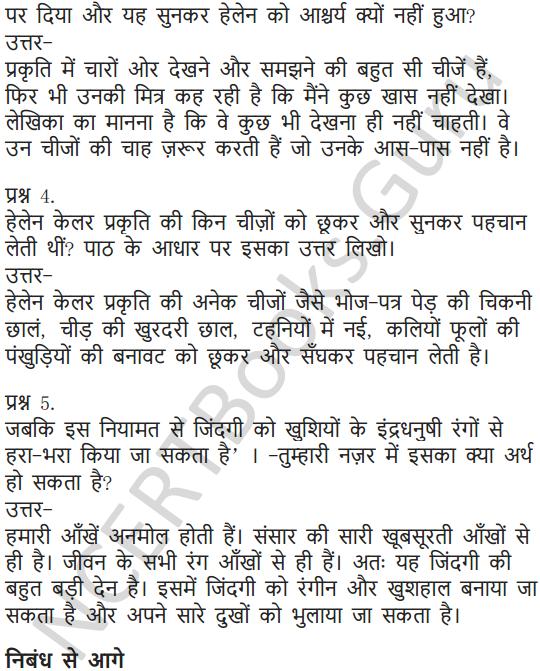NCERT Solutions for Class 6 Hindi Chapter 11 जो देखकर भी नहीं देखते 2