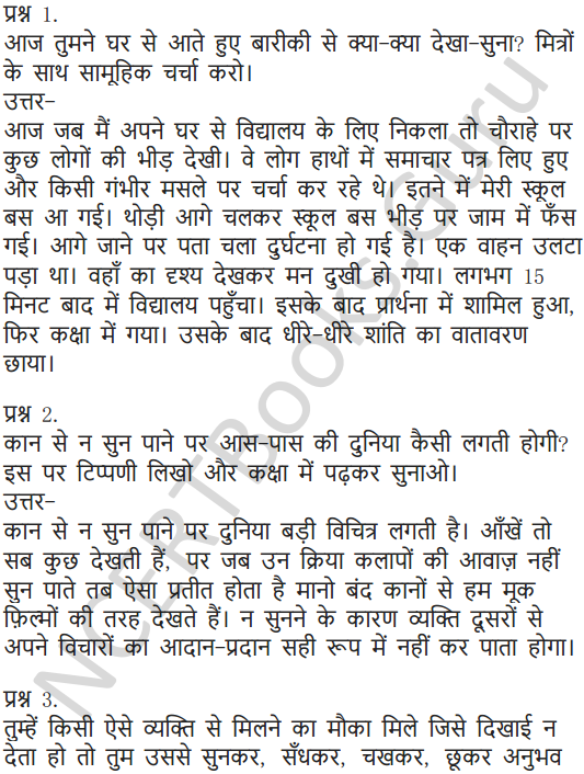 NCERT Solutions for Class 6 Hindi Chapter 11 जो देखकर भी नहीं देखते 3