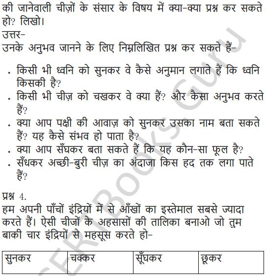 NCERT Solutions for Class 6 Hindi Chapter 11 जो देखकर भी नहीं देखते 4