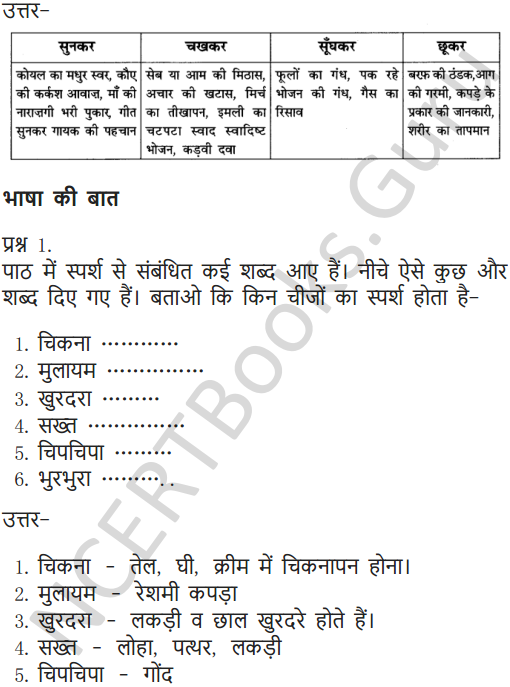 NCERT Solutions for Class 6 Hindi Chapter 11 जो देखकर भी नहीं देखते 5