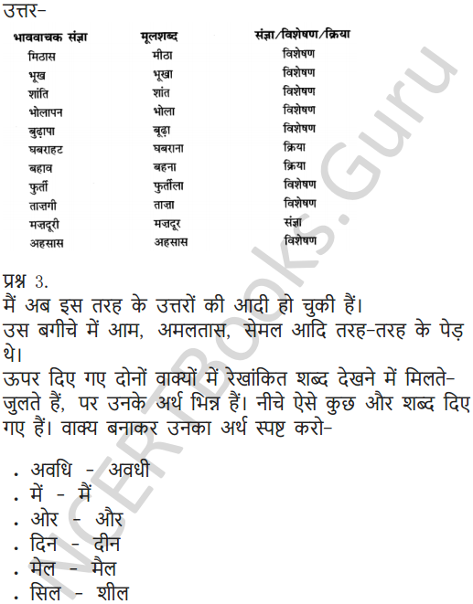 NCERT Solutions for Class 6 Hindi Chapter 11 जो देखकर भी नहीं देखते 7